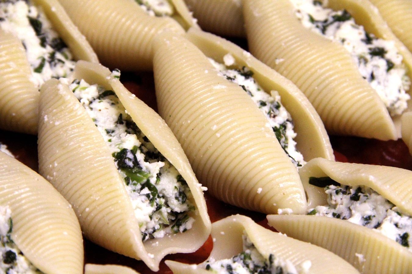cheese-stuffed pasta shells