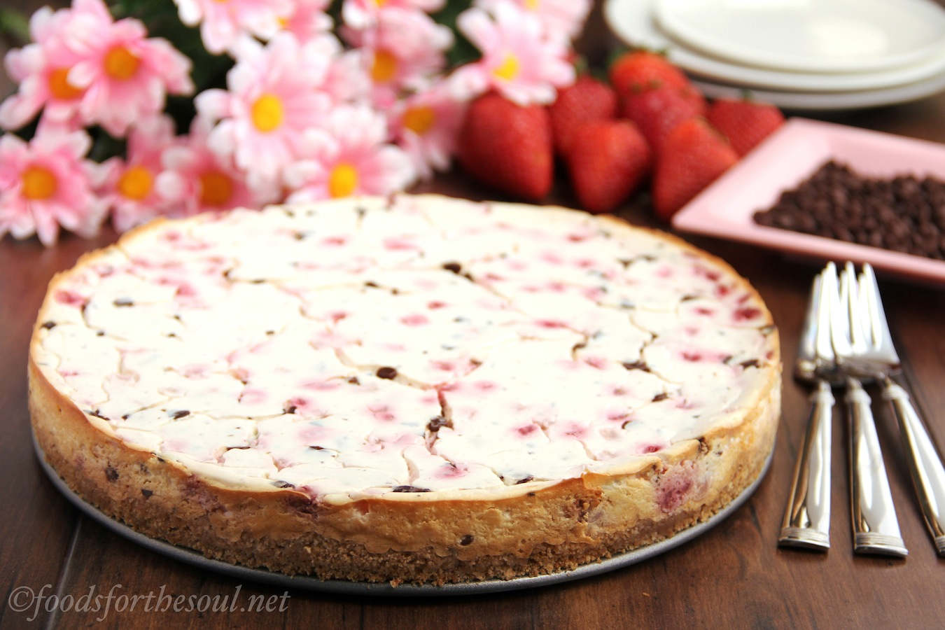 neapolitan greek yogurt cheesecake
