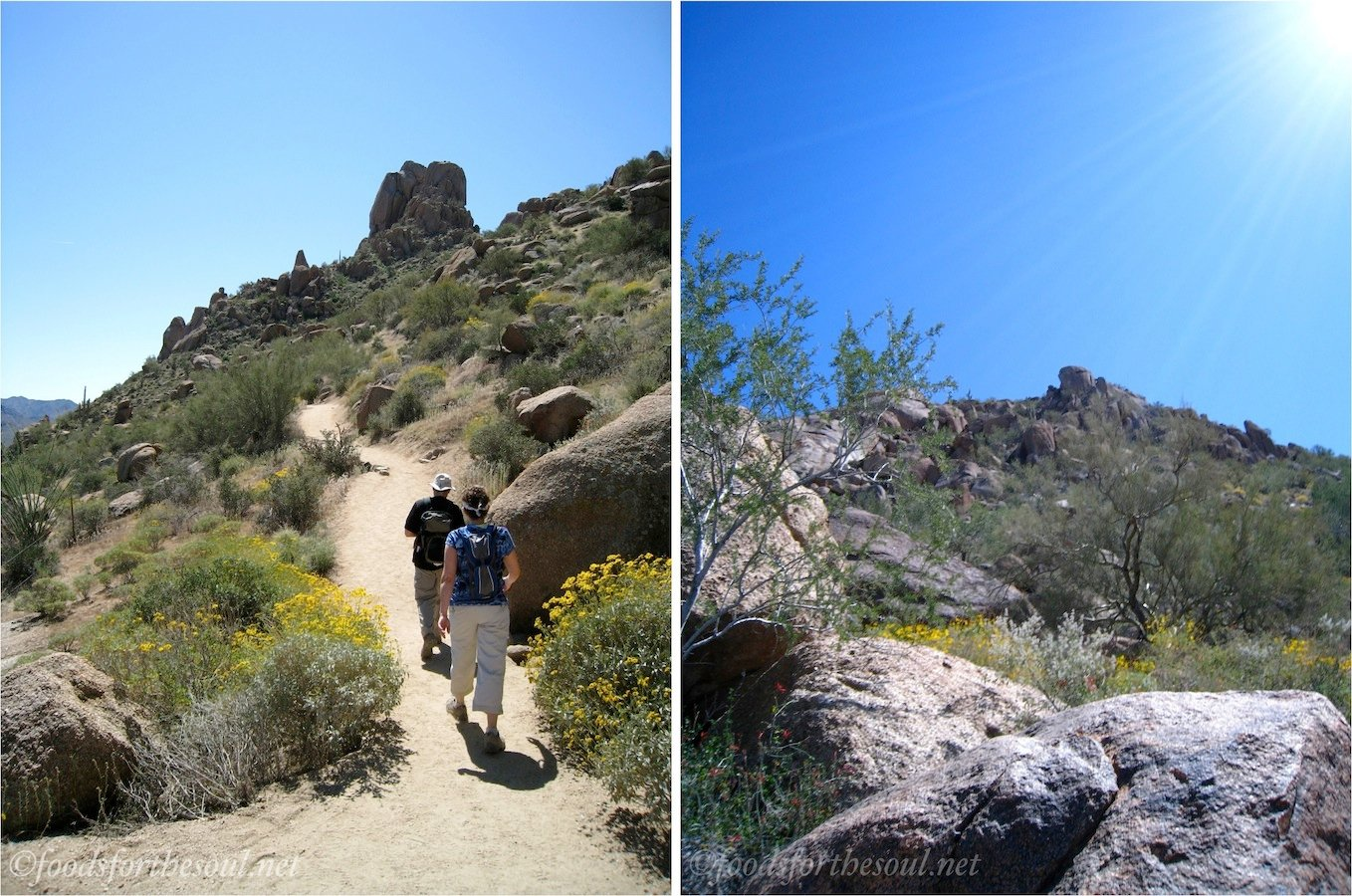 Pinnacle Peak Hike in Scottsdale, AZ