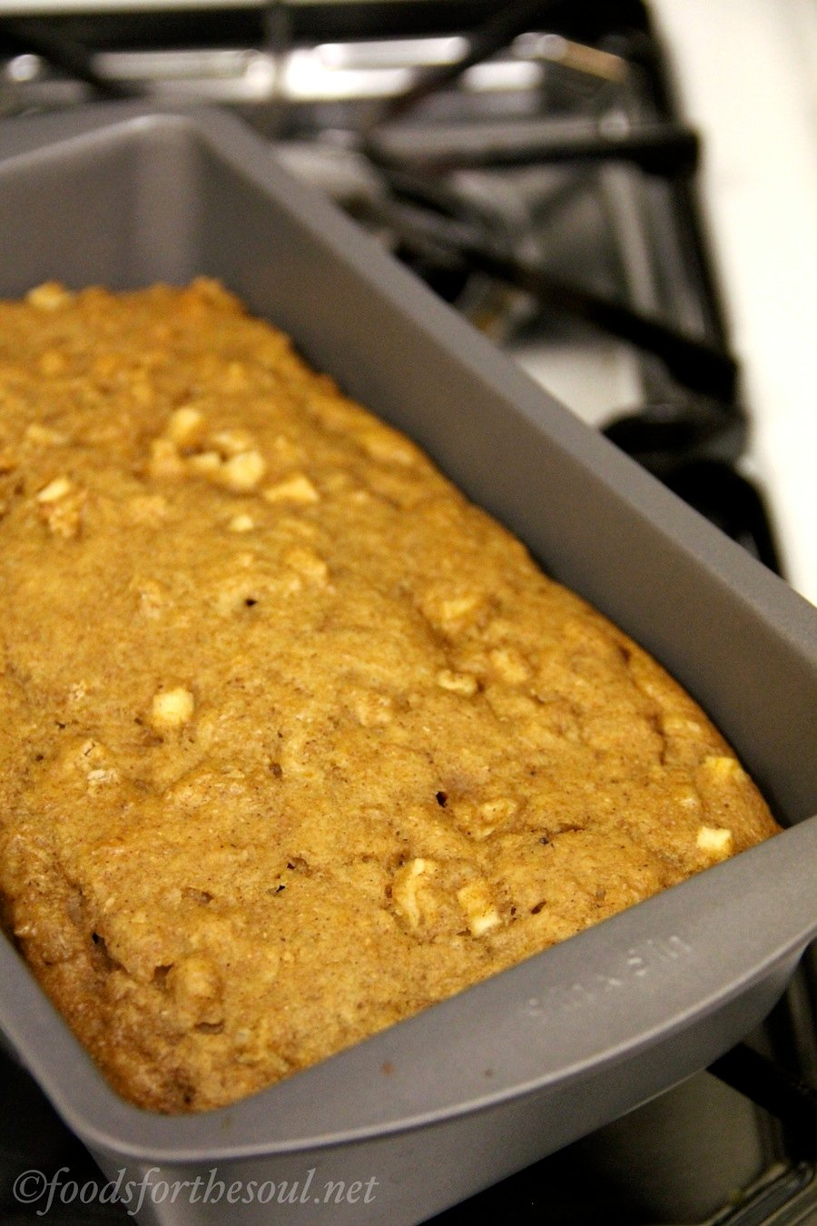 Harvest Bread -- a guilt-free quick bread packed with pumpkin & juicy apples!