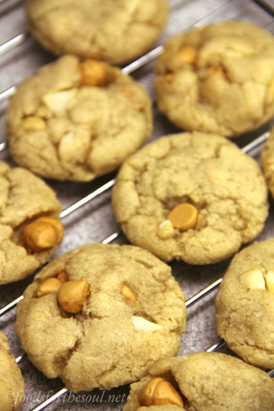 Butterscotch Macadamia Nut Cookies -- even better than white chocolate!