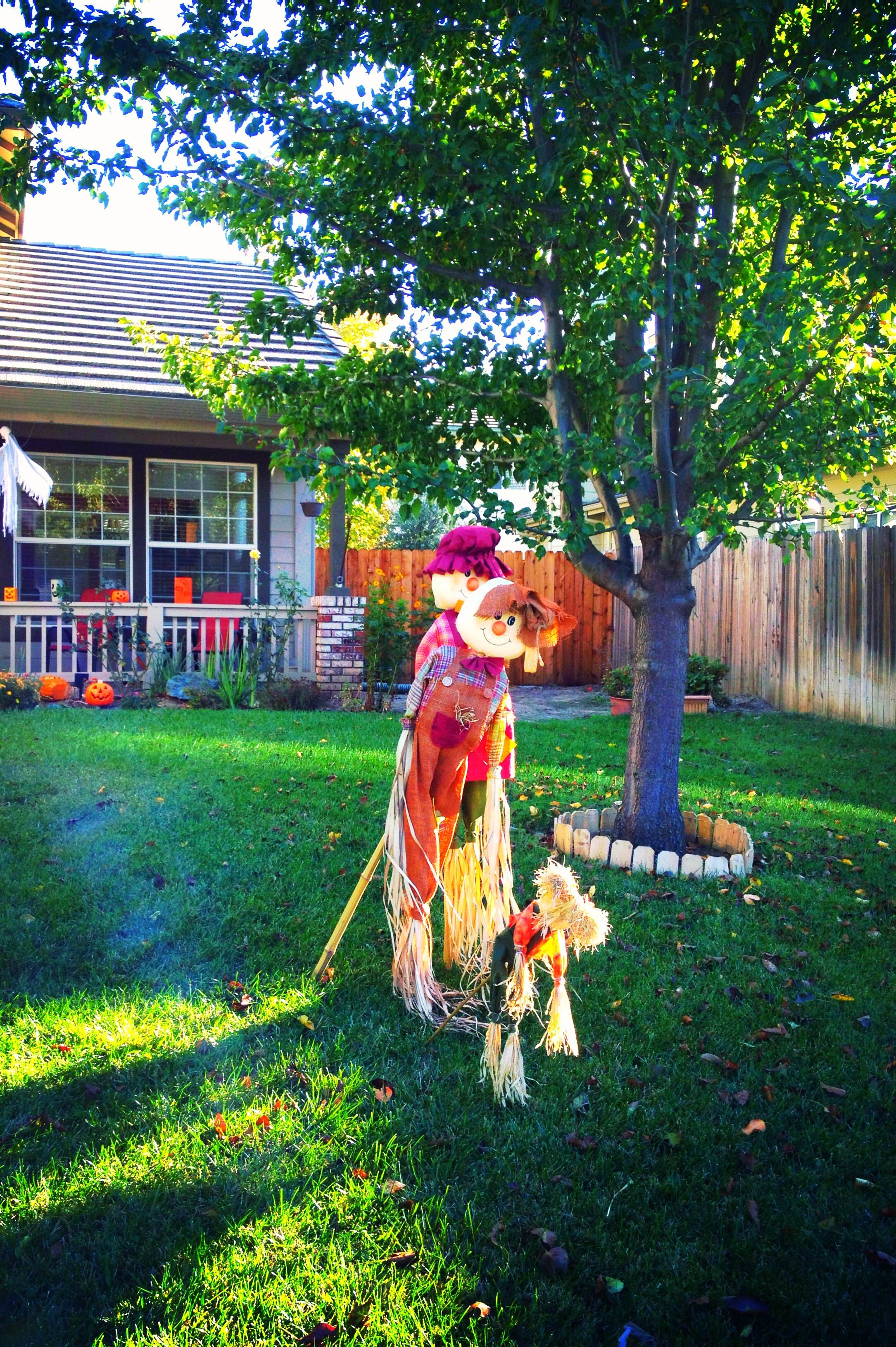 Straw Scarecrows -- festive decorations or frightening dog deterrents? {Sunday Funday #5 on foodsforthesoul.net}