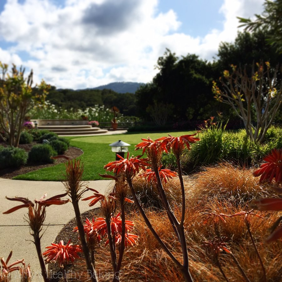 10 Life Lessons from Carmel, CA
