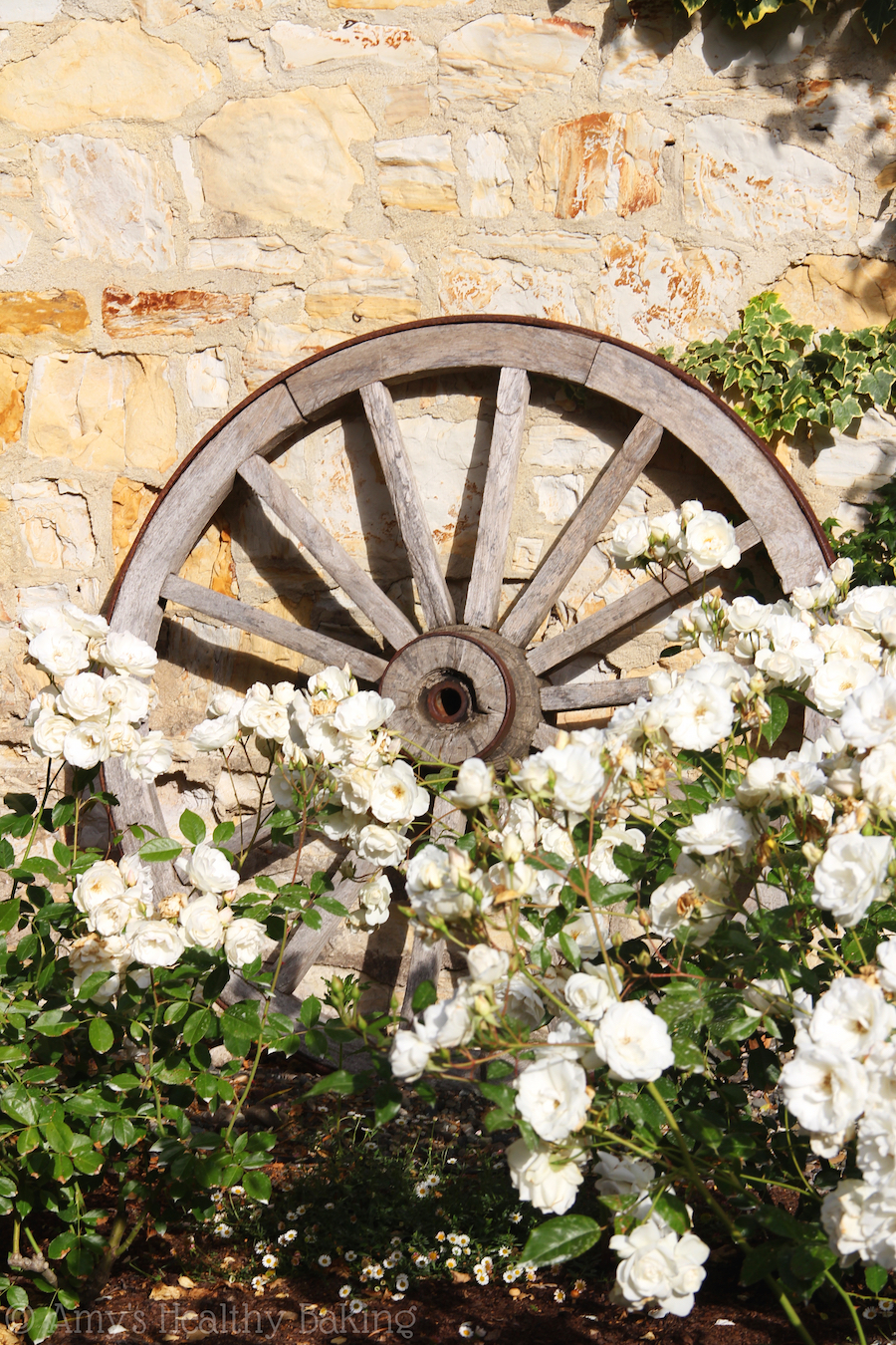 white flowers in front of a wooden wagon wheel and brick wall
