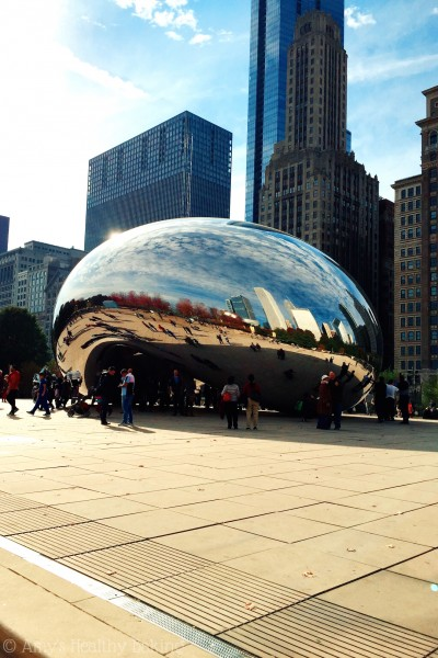November Travel: Chicago