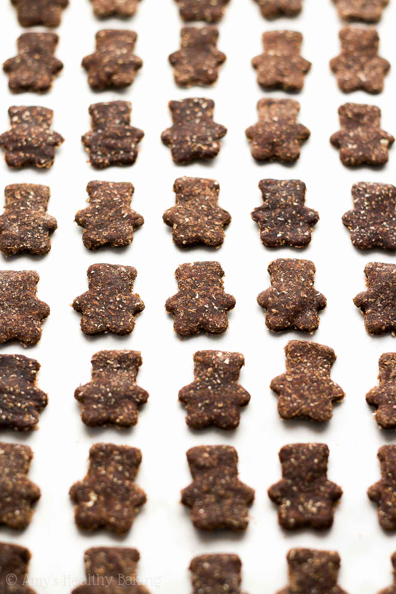 Healthy Homemade Chocolate Teddy Grahams -- truly guilt-free & WAY better than store-bought! Crunchy, extra chocolaty & so addictive!