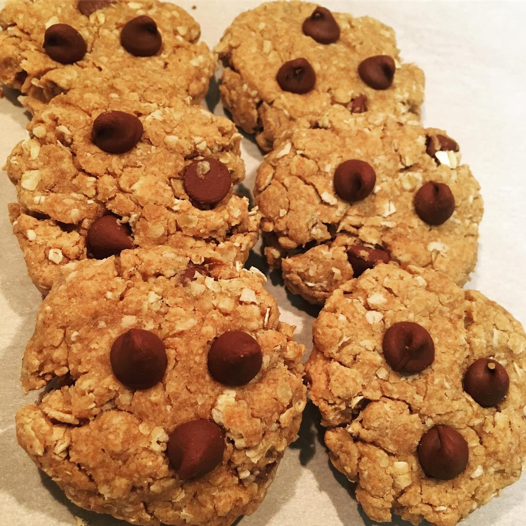 chocolate chip peanut butter oatmeal cookies | @fitfamschulz