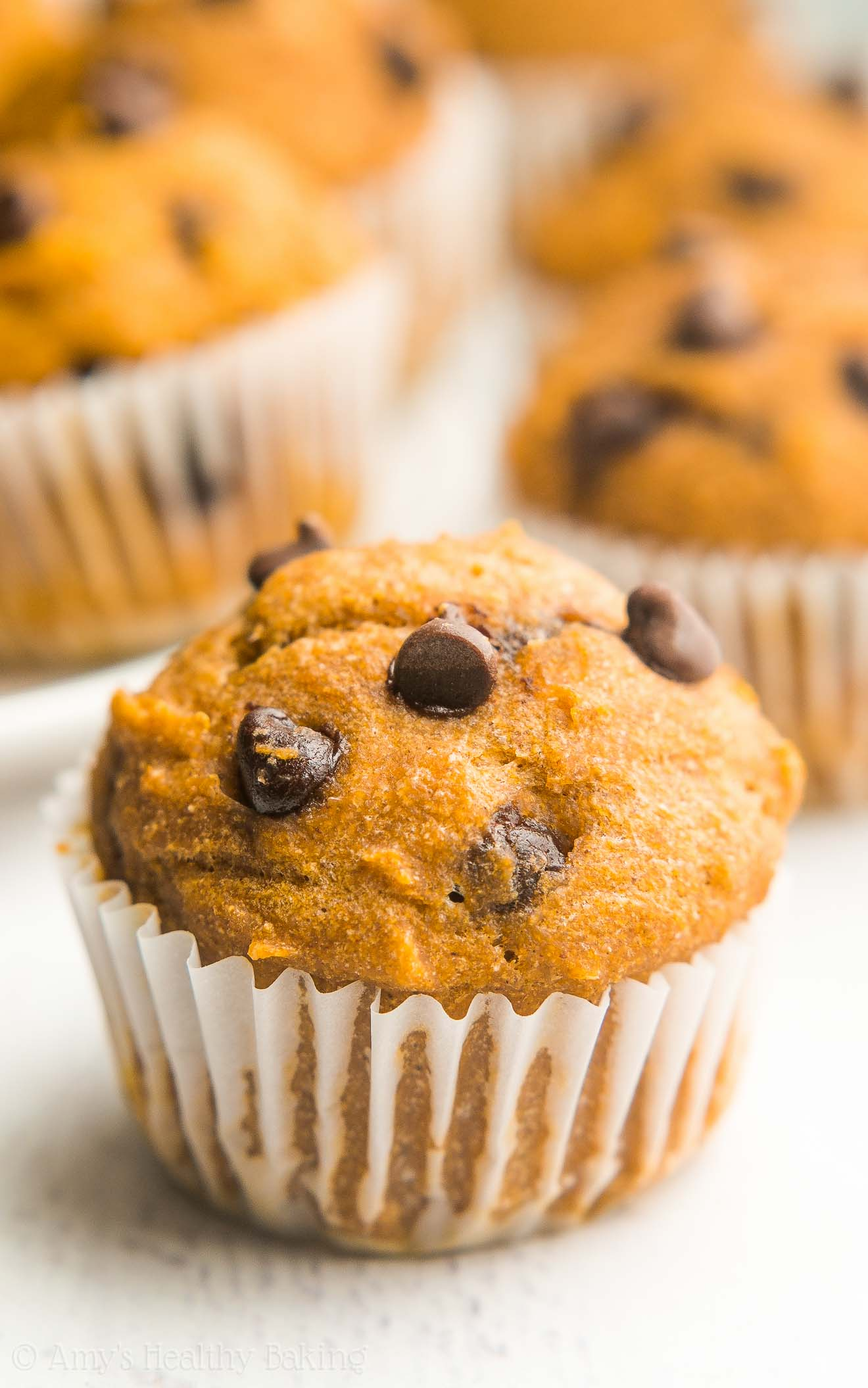 Chocolate Chip Pumpkin Mini Muffins | Amy's Healthy Baking
