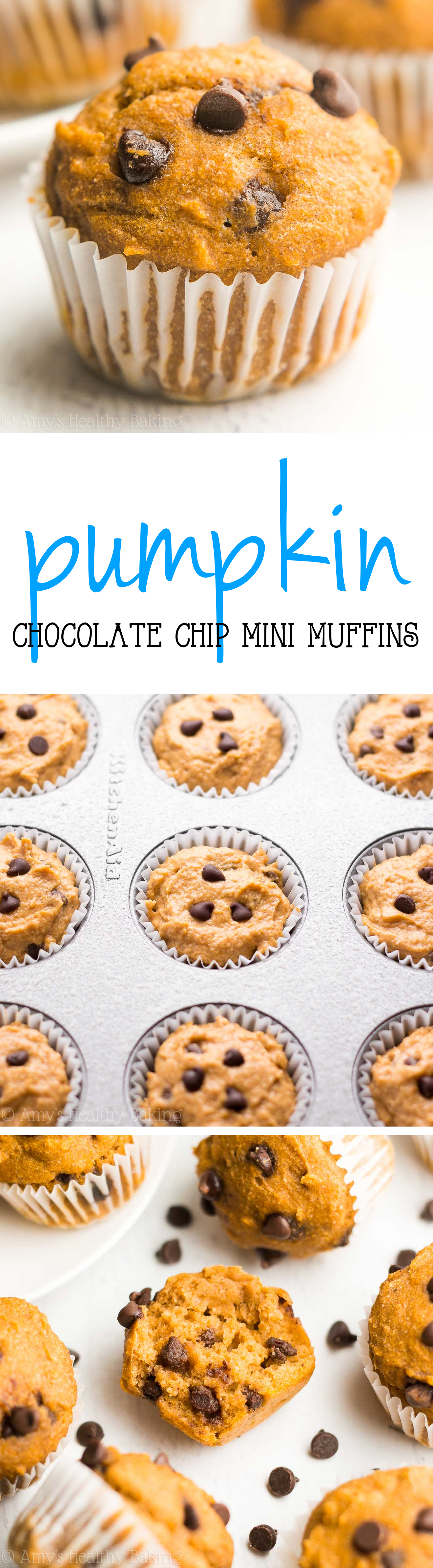 Healthy Chocolate Chip Pumpkin Mini Muffins -- just 44 calories & like eating pumpkin pie for breakfast! SO easy & good!
