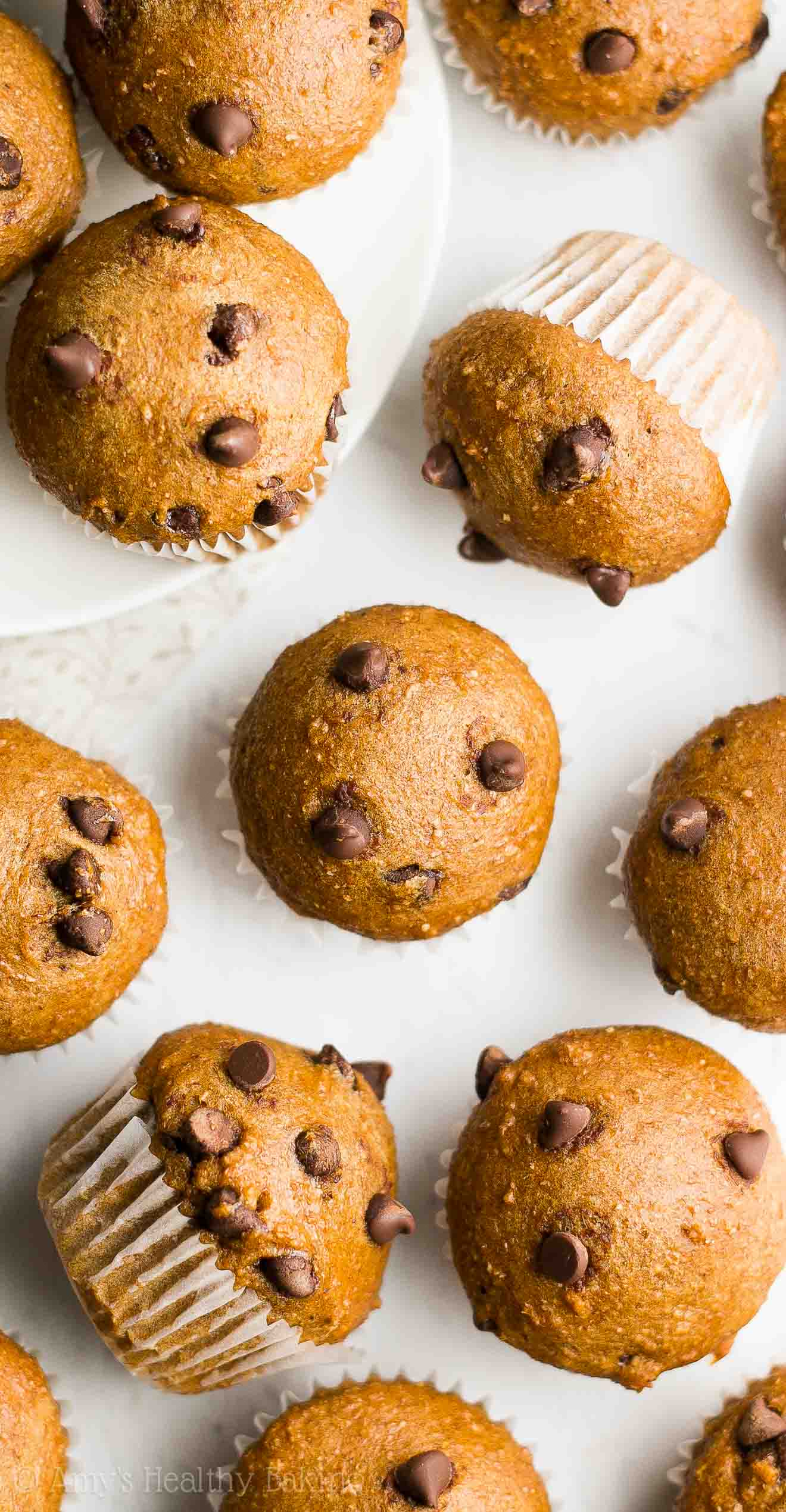 Chocolate Chocolate Chip Muffins Calories