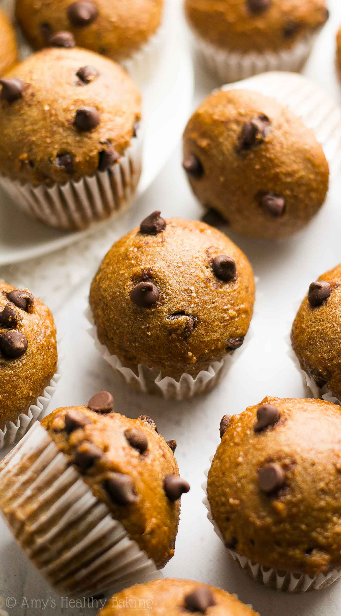 Healthy Chocolate Chip Gingerbread Mini Muffins -- just 51 calories & like eating cupcakes for breakfast! SO easy & good!