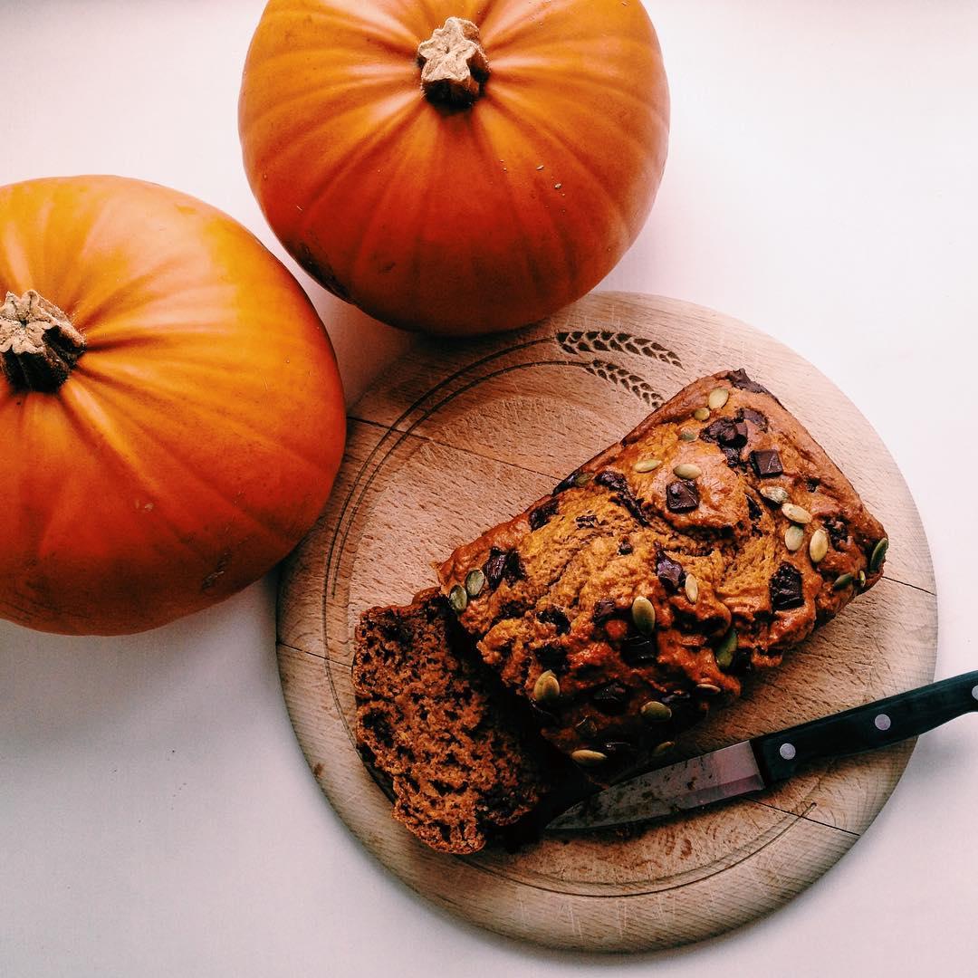 chocolate chip pumpkin bread by @maddie_mattox