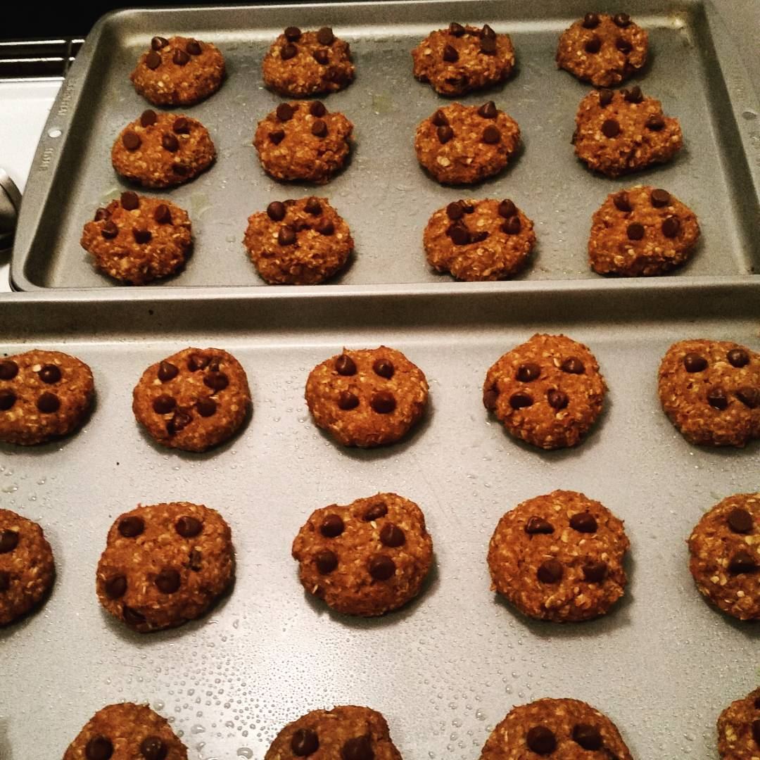 pumpkin pie chocolate chip oatmeal cookies by @mynameisskhan