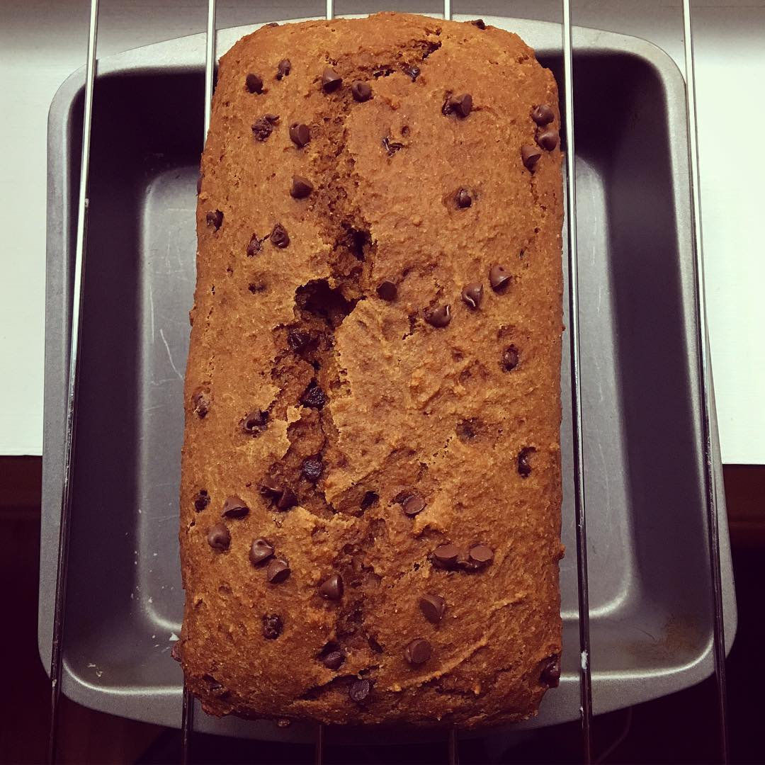 healthy chocolate chip gingerbread by @adancersliveit