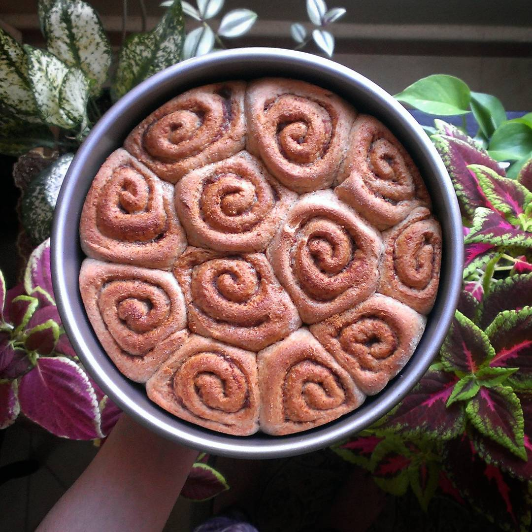 healthy classic cinnamon rolls by @iranian_baker