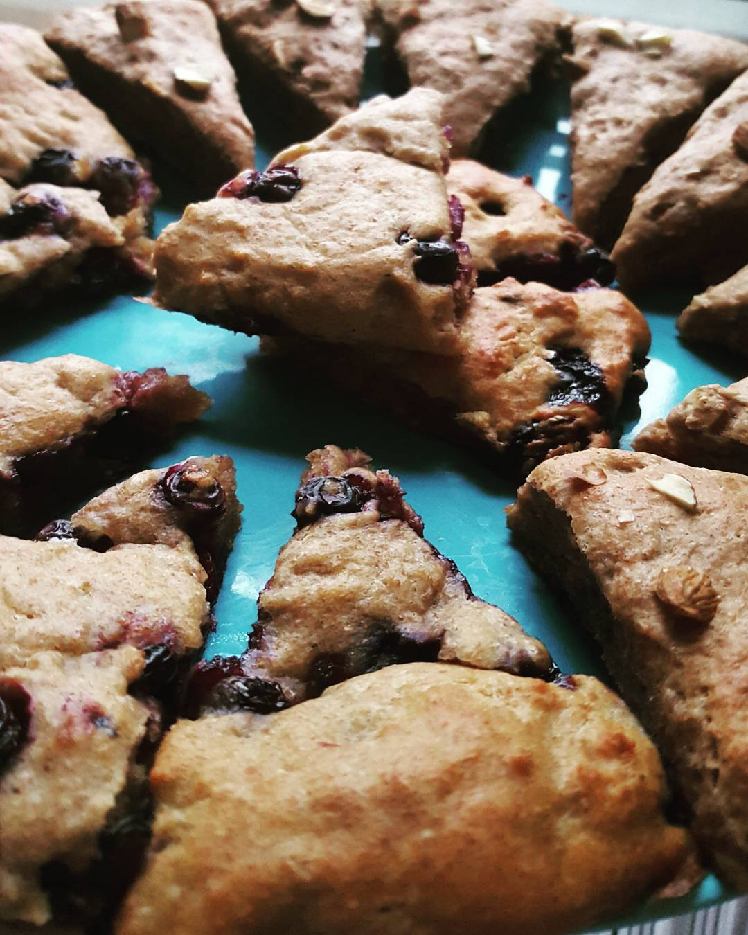 the ultimate healthy blueberry scones by @fit.lize