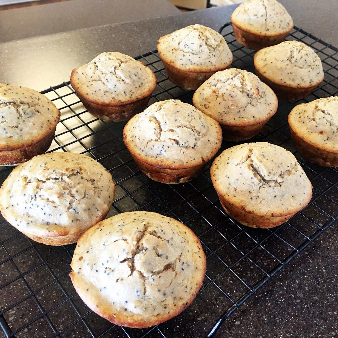 the ultimate healthy lemon poppy seed muffins by @aliciadturner