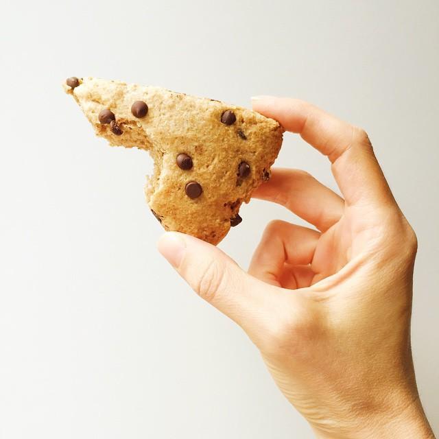 healthy chocolate chip scones by @jamiereidrd