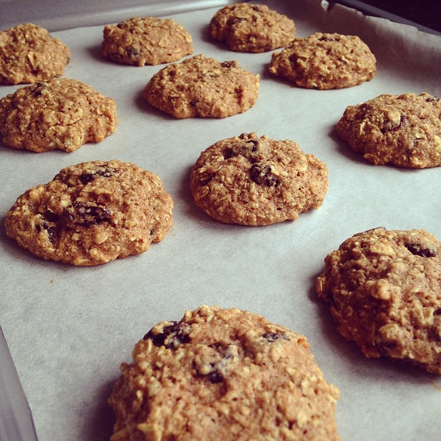 the ultimate healthy soft & chewy oatmeal raisin cookies by @adancersliveit
