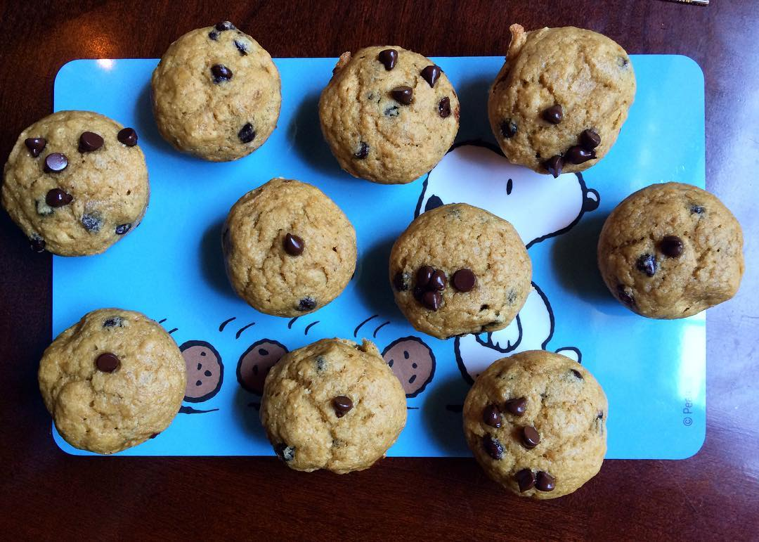 chocolate chip mini muffins by @steph_piit28
