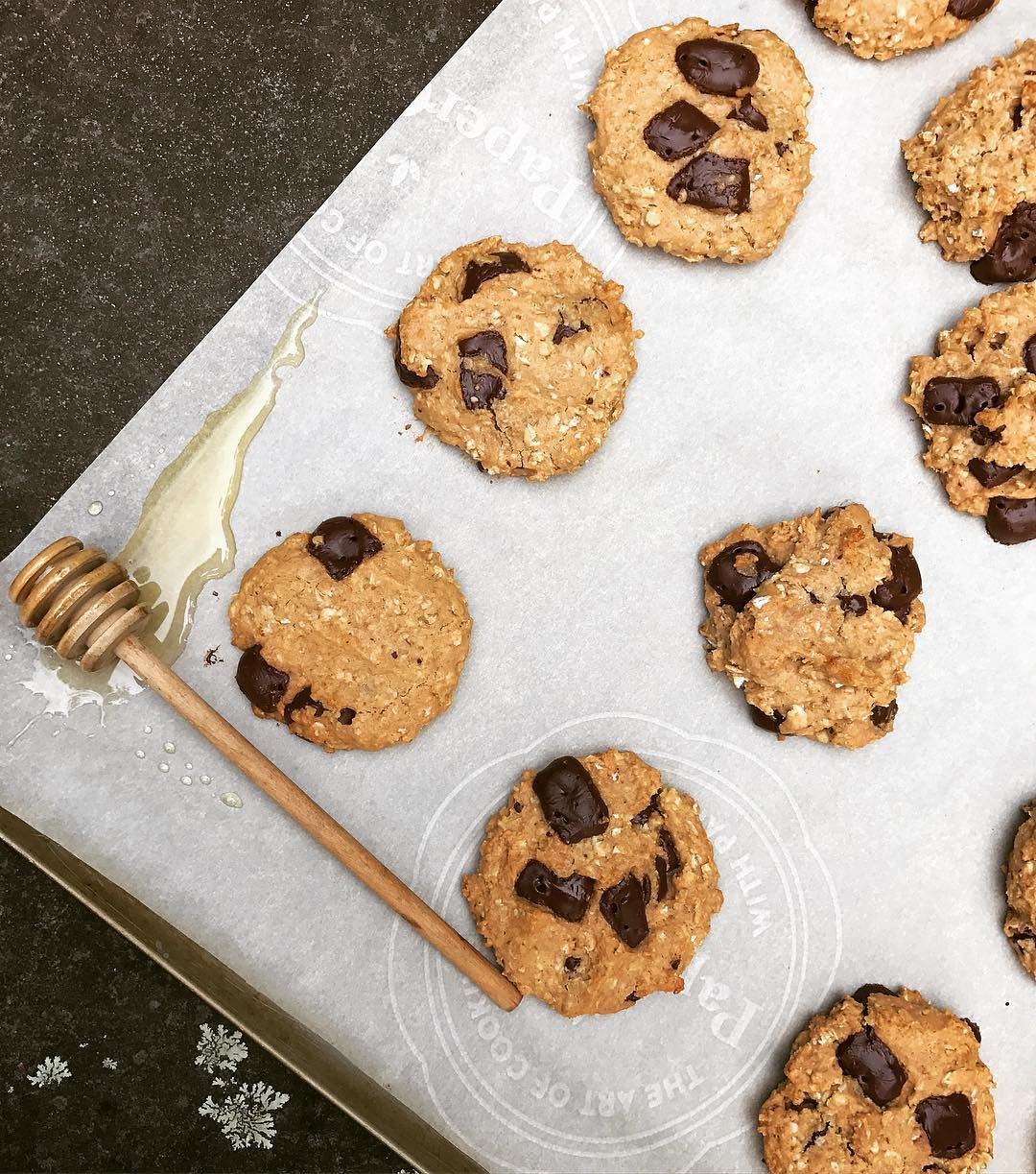 chocolate chip peanut butter oatmeal cookies by @guacnrollin