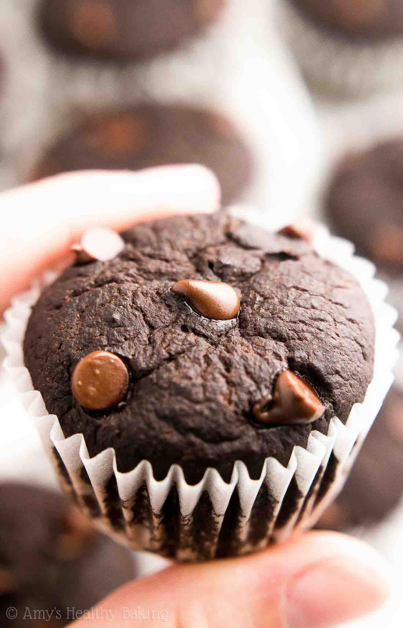 {HEALTHY!} Mocha Chocolate Chip Mini Muffins -- only 35 calories! They taste like a cross between BROWNIES & muffins!! SO rich, so chocolaty, so perfect! I'm obsessed with this easy recipe!