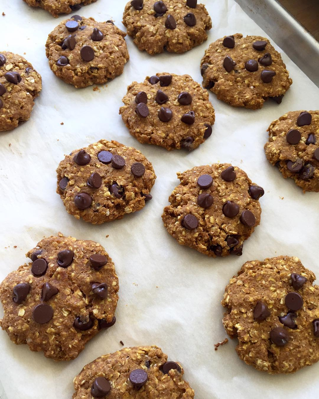 pumpkin pie chocolate chip oatmeal cookies by @thefitchickchapter