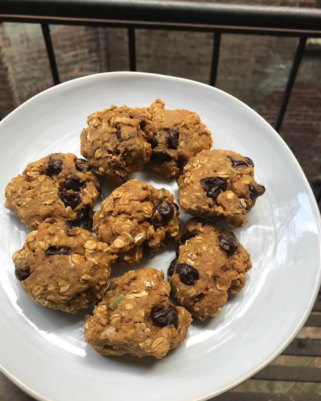 healthy pumpkin pie chocolate chip oatmeal cookies by @thefourthbird
