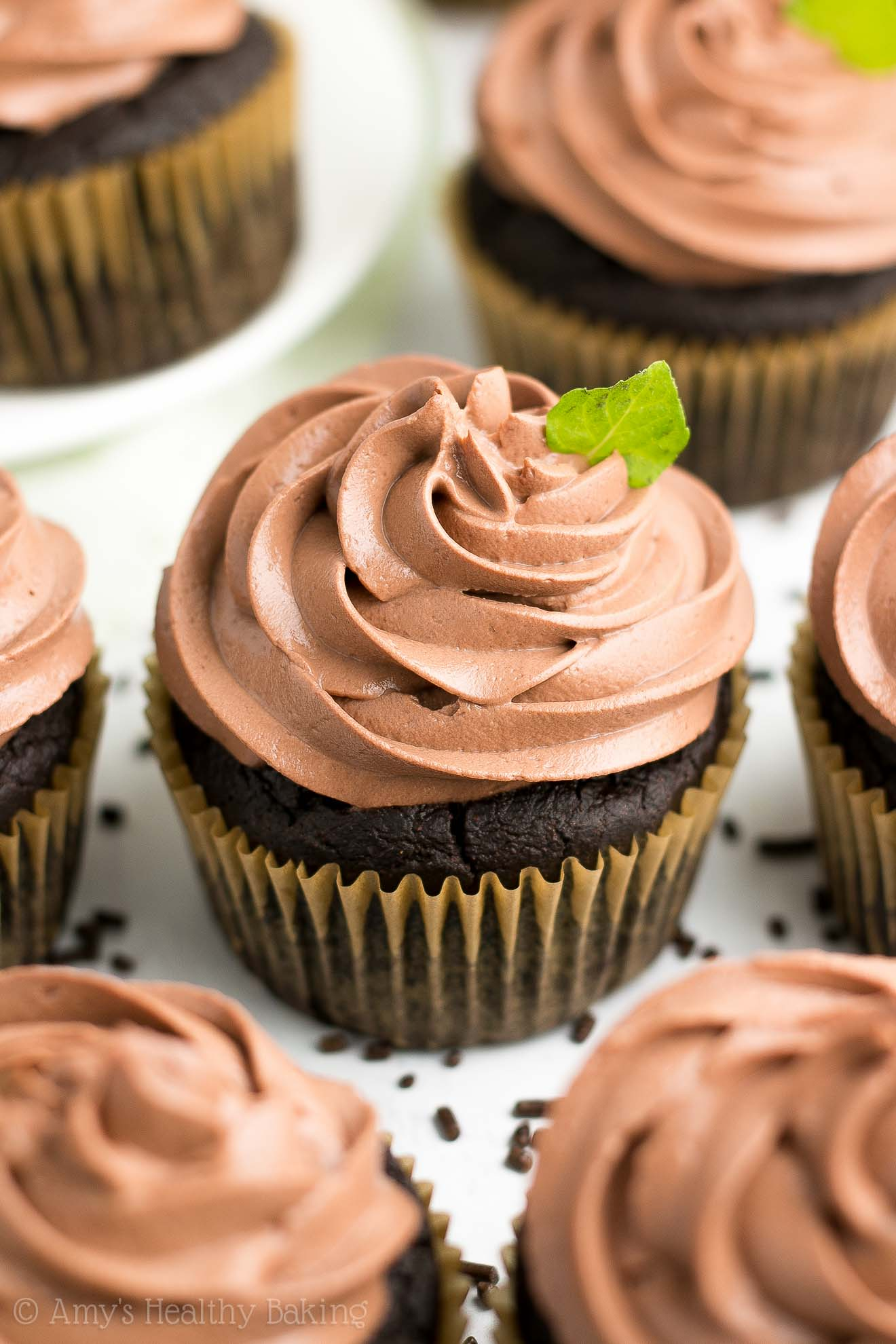 Healthy Sugar-Free Mint Chocolate Cupcakes with Chocolate Greek Yogurt Frosting