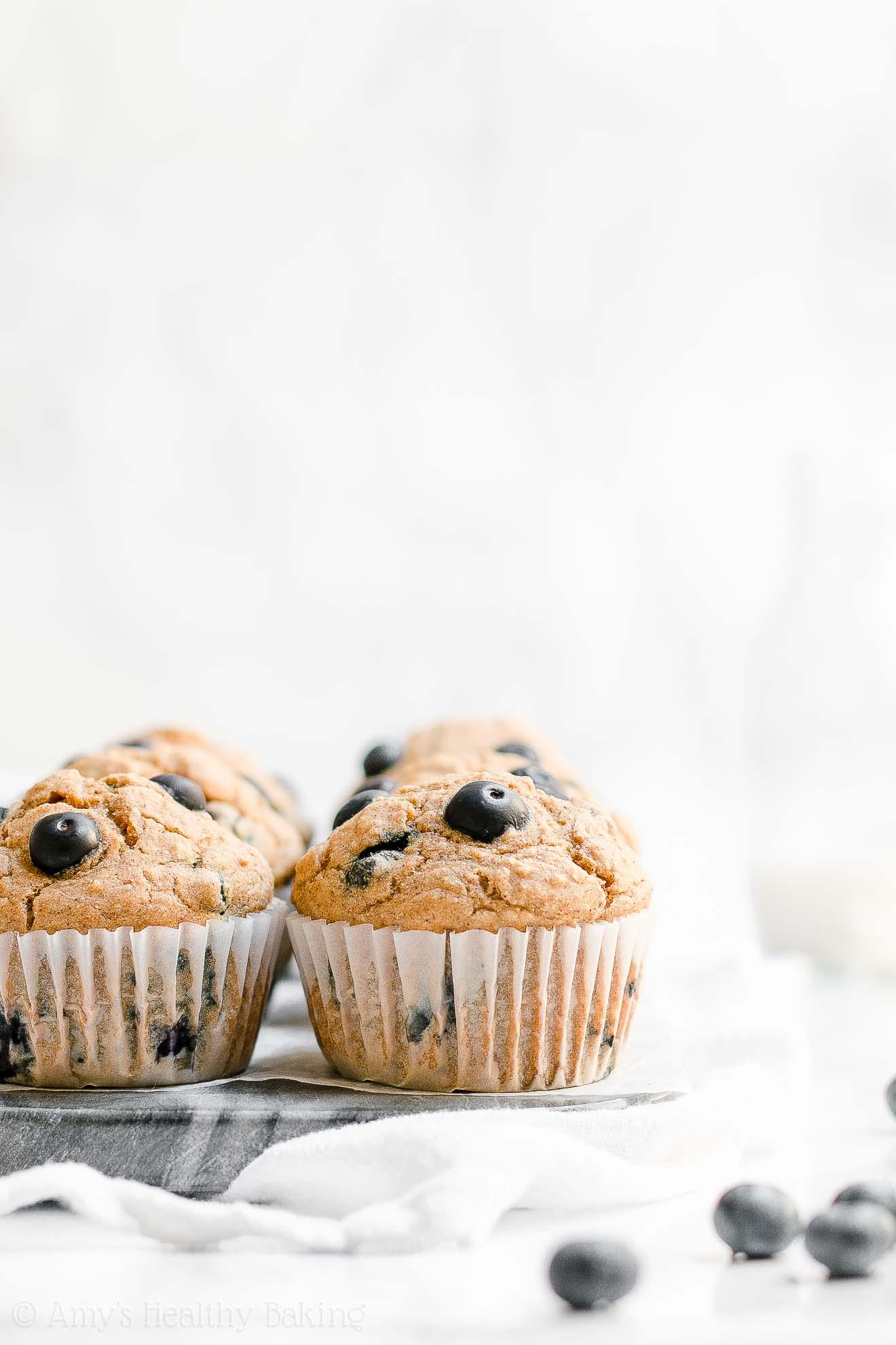 ULTIMATE Easy Healthy Greek Yogurt Blueberry Oatmeal Muffins