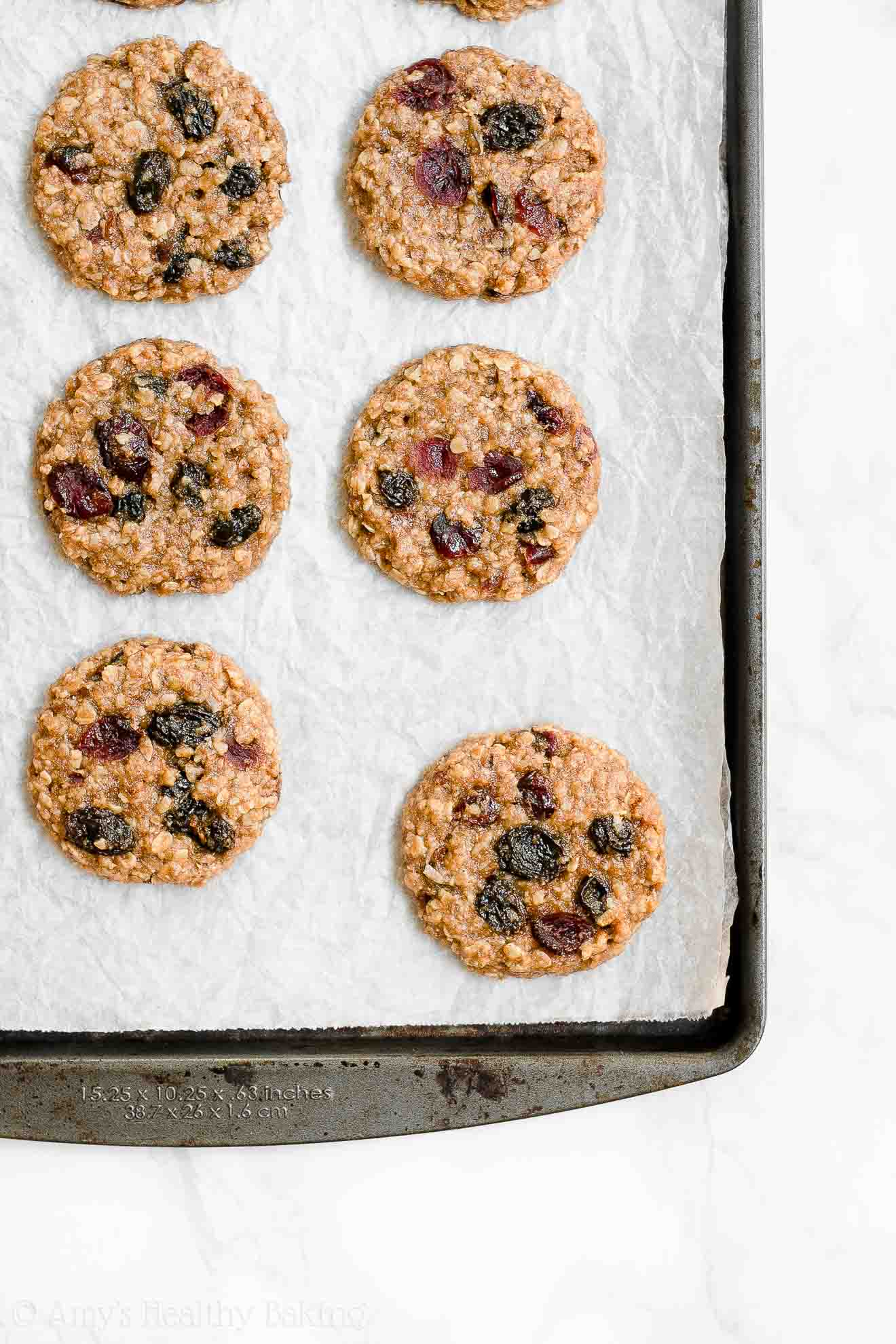Healthy Low Fat Harvest Oatmeal Cookies with dried cranberries, raisins & nuts