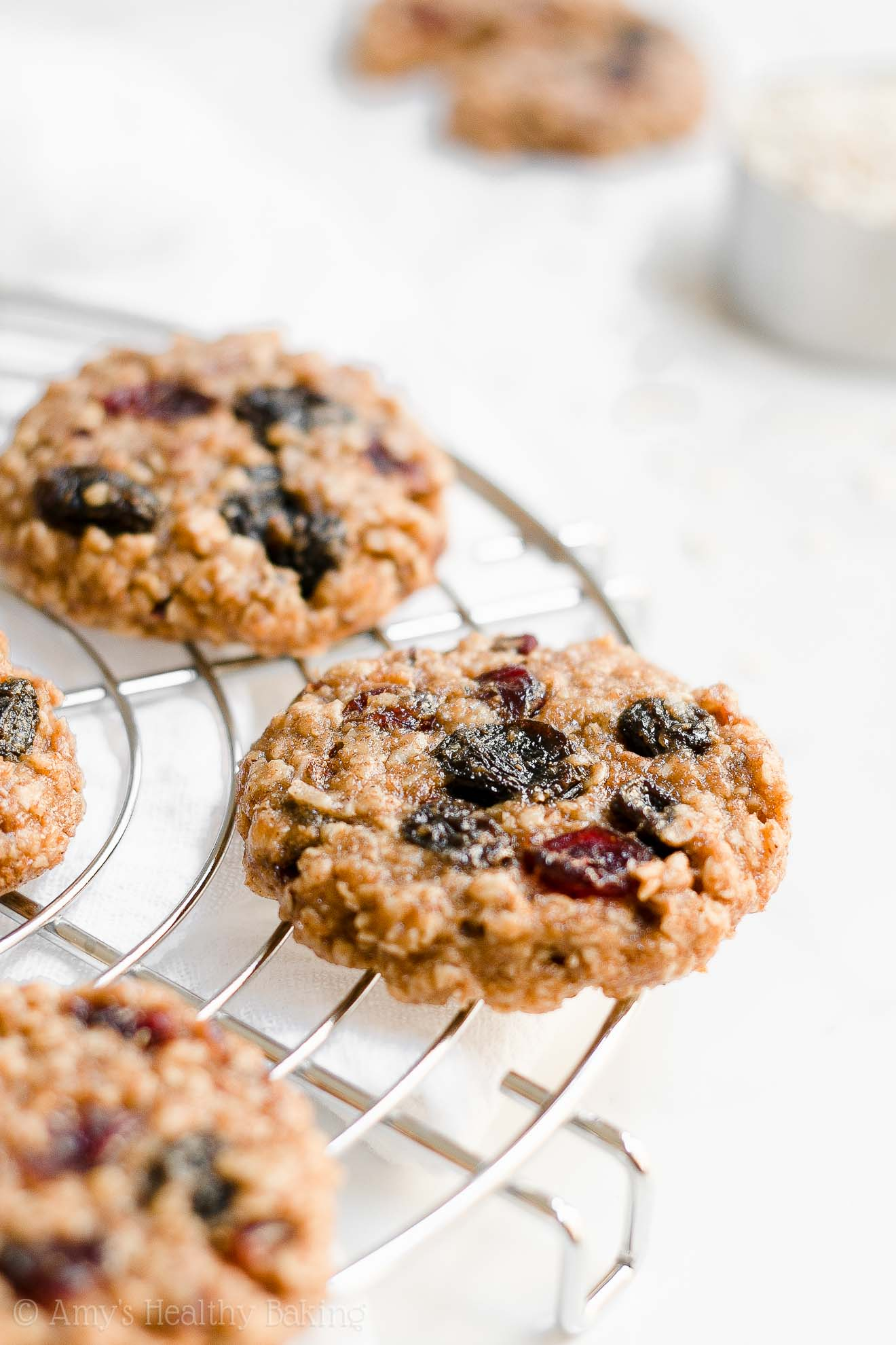 Healthy Harvest Oatmeal Cookies with raisins, dried cranberries, nuts & coconut