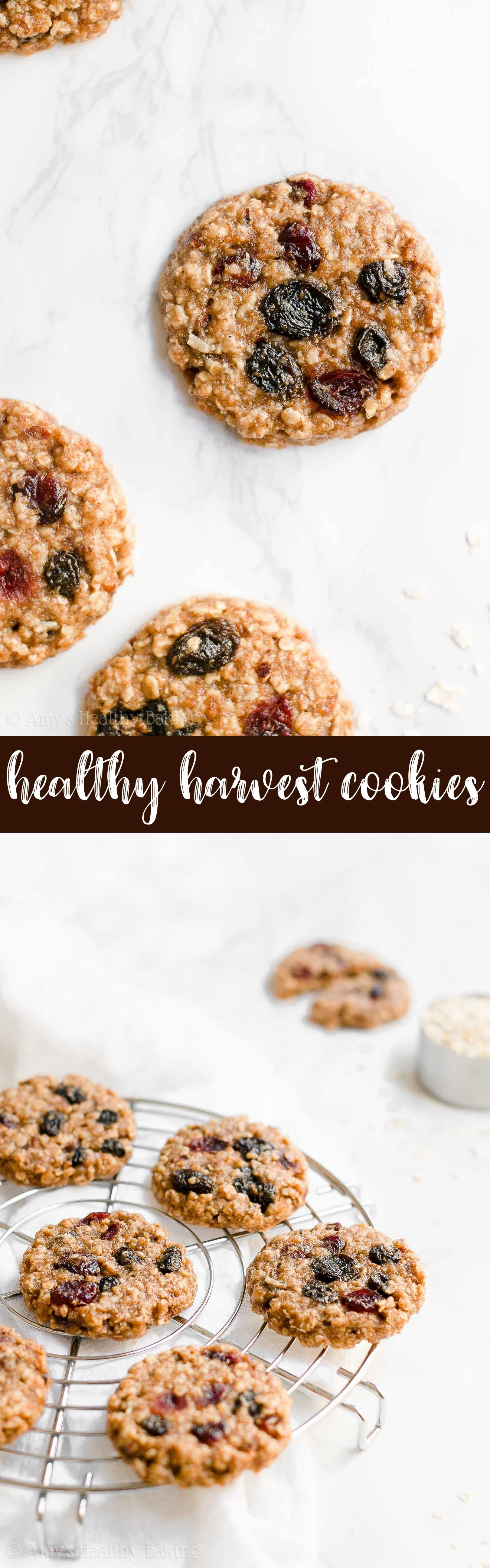 Best Ever Healthy Clean Eating Chewy Harvest Oatmeal Cookies