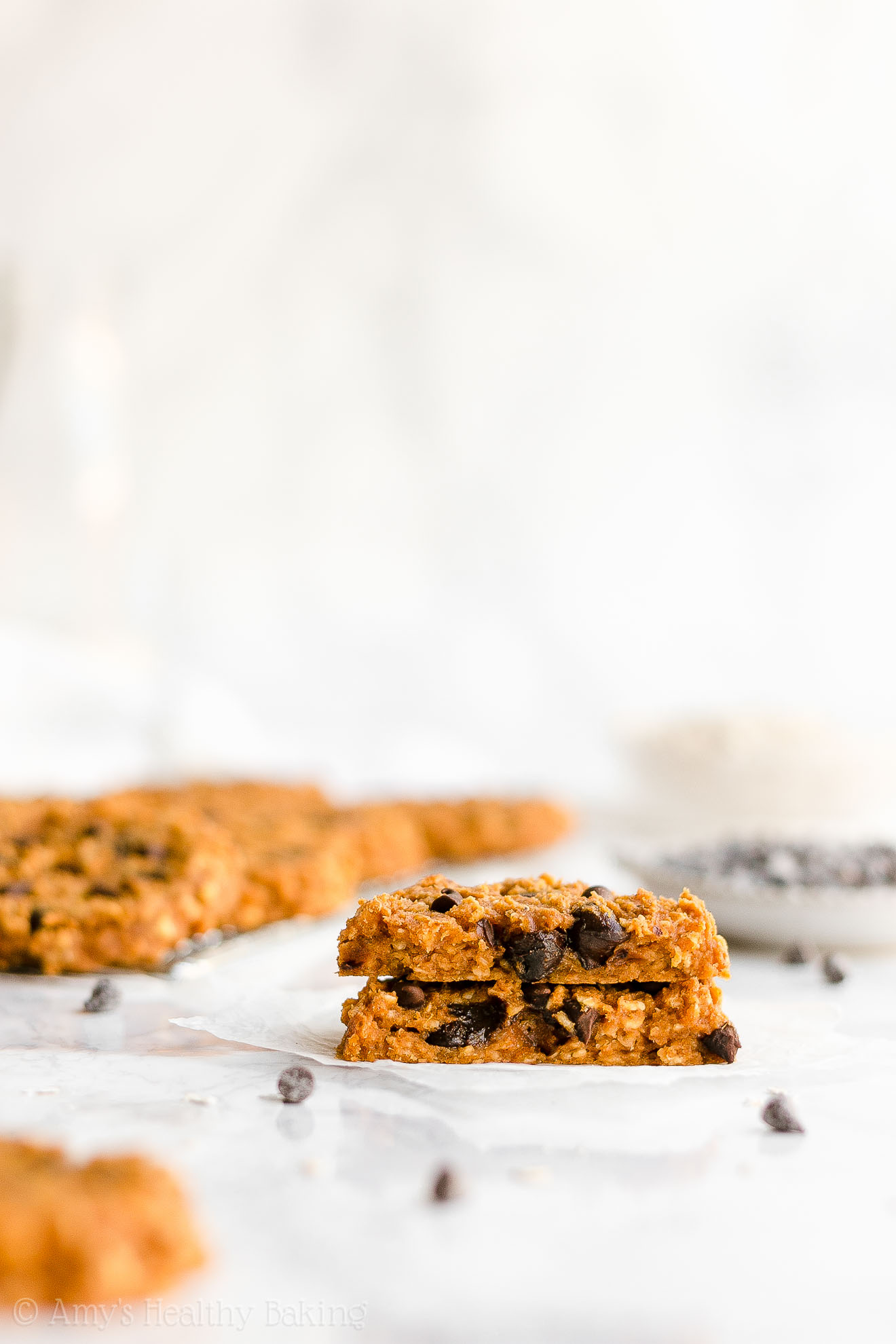 Healthy Clean Eating Flourless Pumpkin Chocolate Chip Oatmeal Protein Cookies