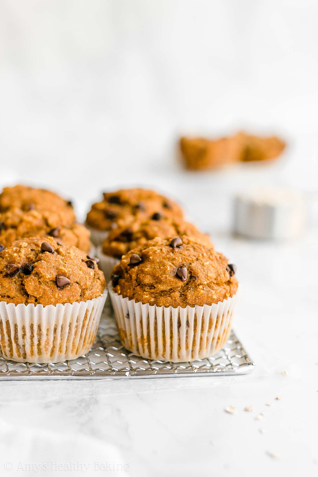 Moist Healthy Whole Wheat Greek Yogurt Pumpkin Chocolate Chip Oatmeal Muffins