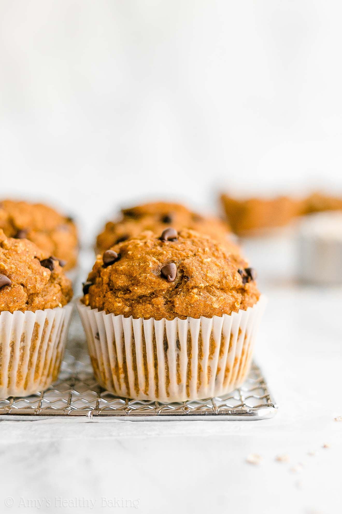 Easy Healthy Low Fat Sugar Free Pumpkin Chocolate Chip Oatmeal Muffins