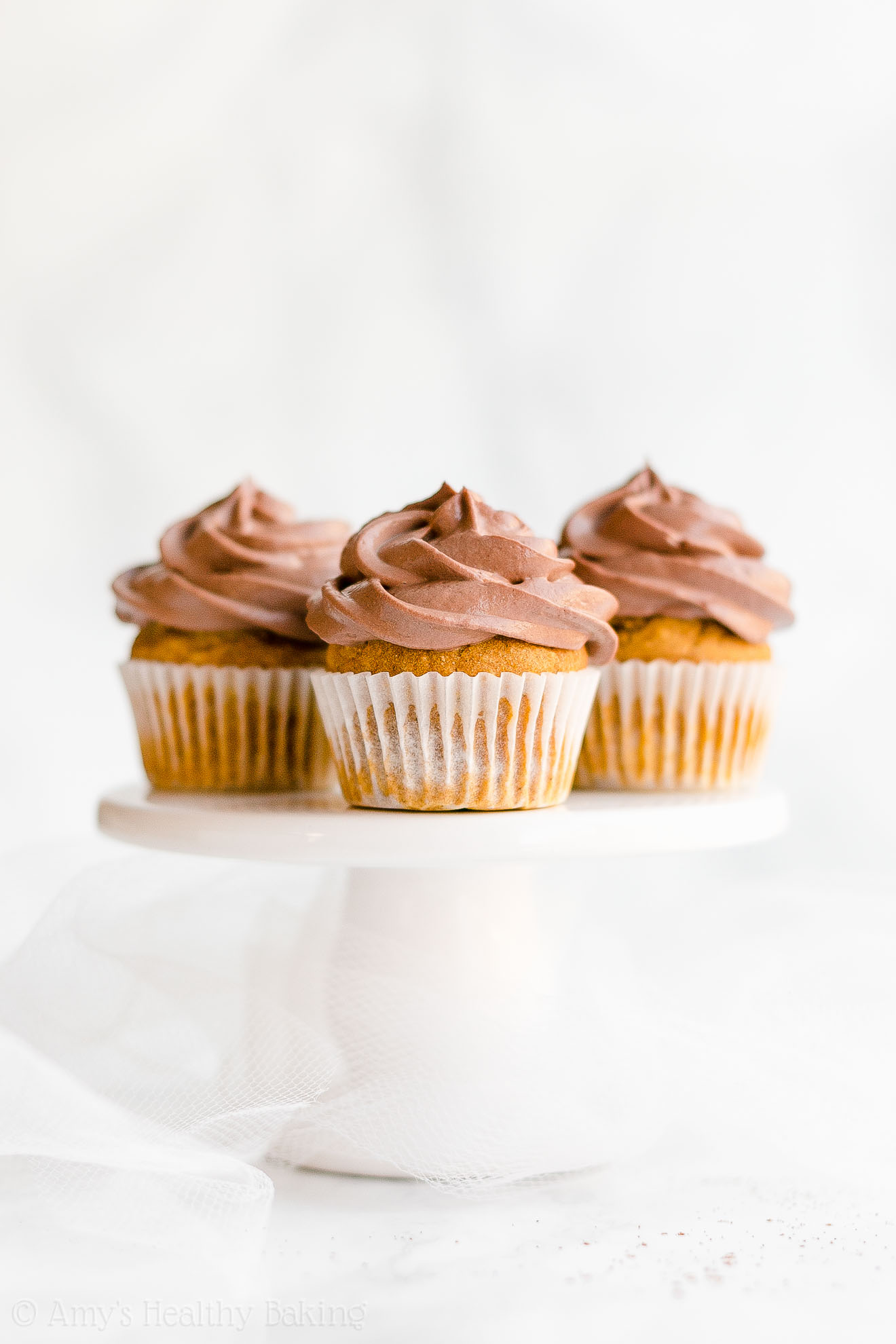 Healthy Low Fat Gluten Free Small Batch Mini Pumpkin Cupcakes with Chocolate Frosting