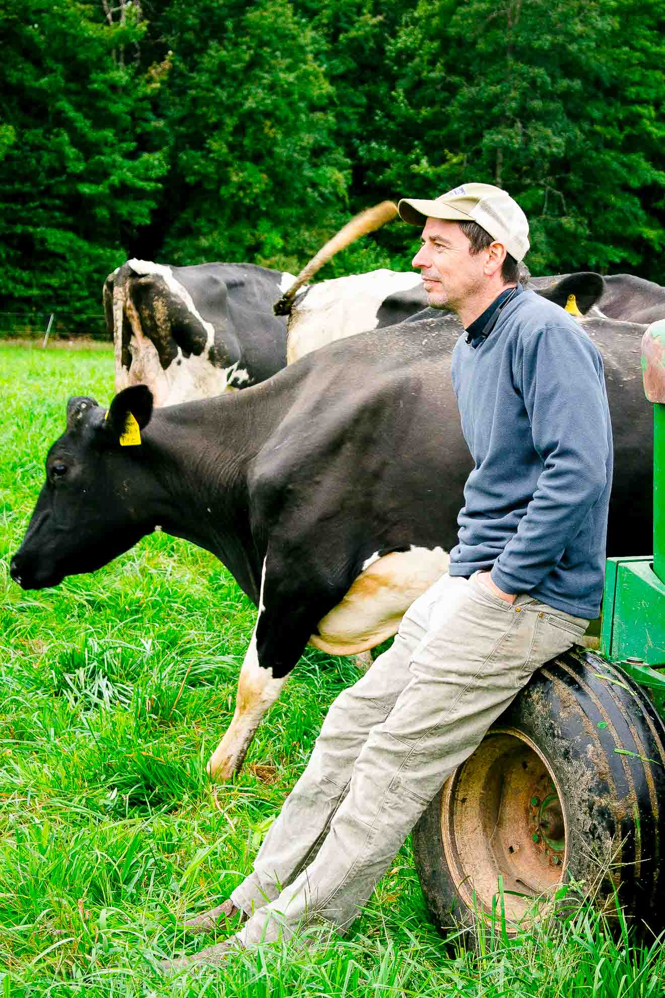 Pete, a co-owner of the Miller Organic Dairy Farm in Vermont