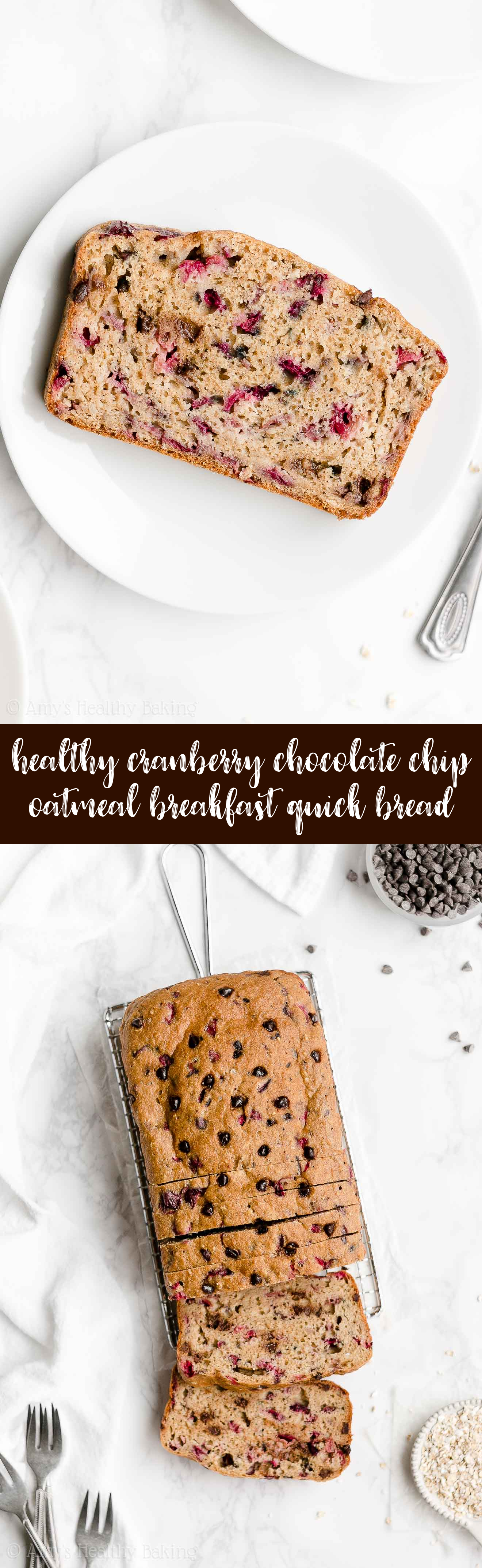 Best Easy Healthy Cranberry Chocolate Chip Oatmeal Breakfast Quick Bread