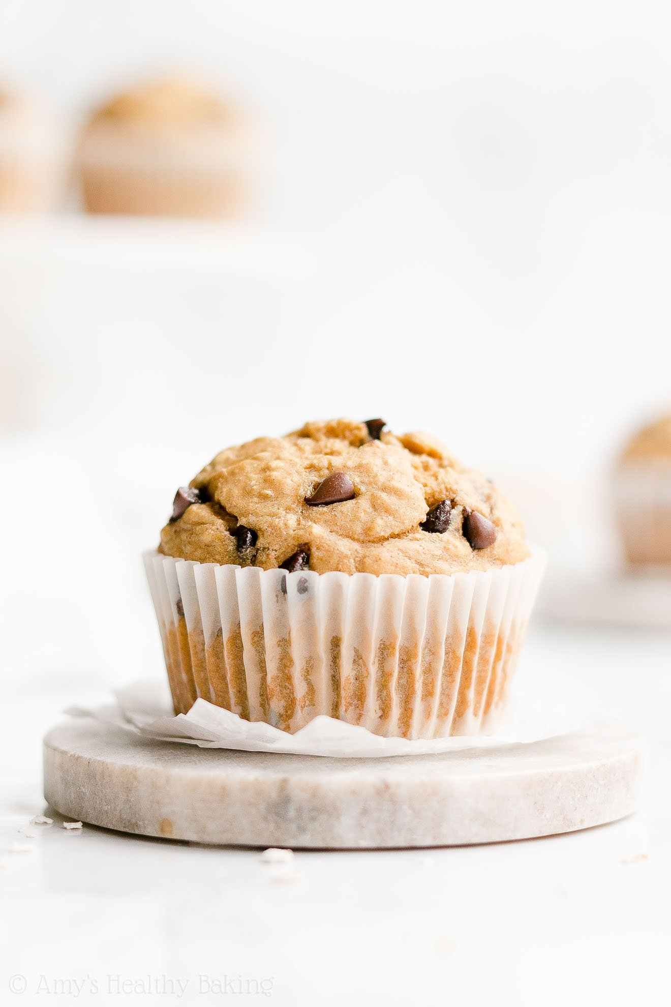 Easy Healthy Moist Greek Yogurt Banana Chocolate Chip Oatmeal Muffins