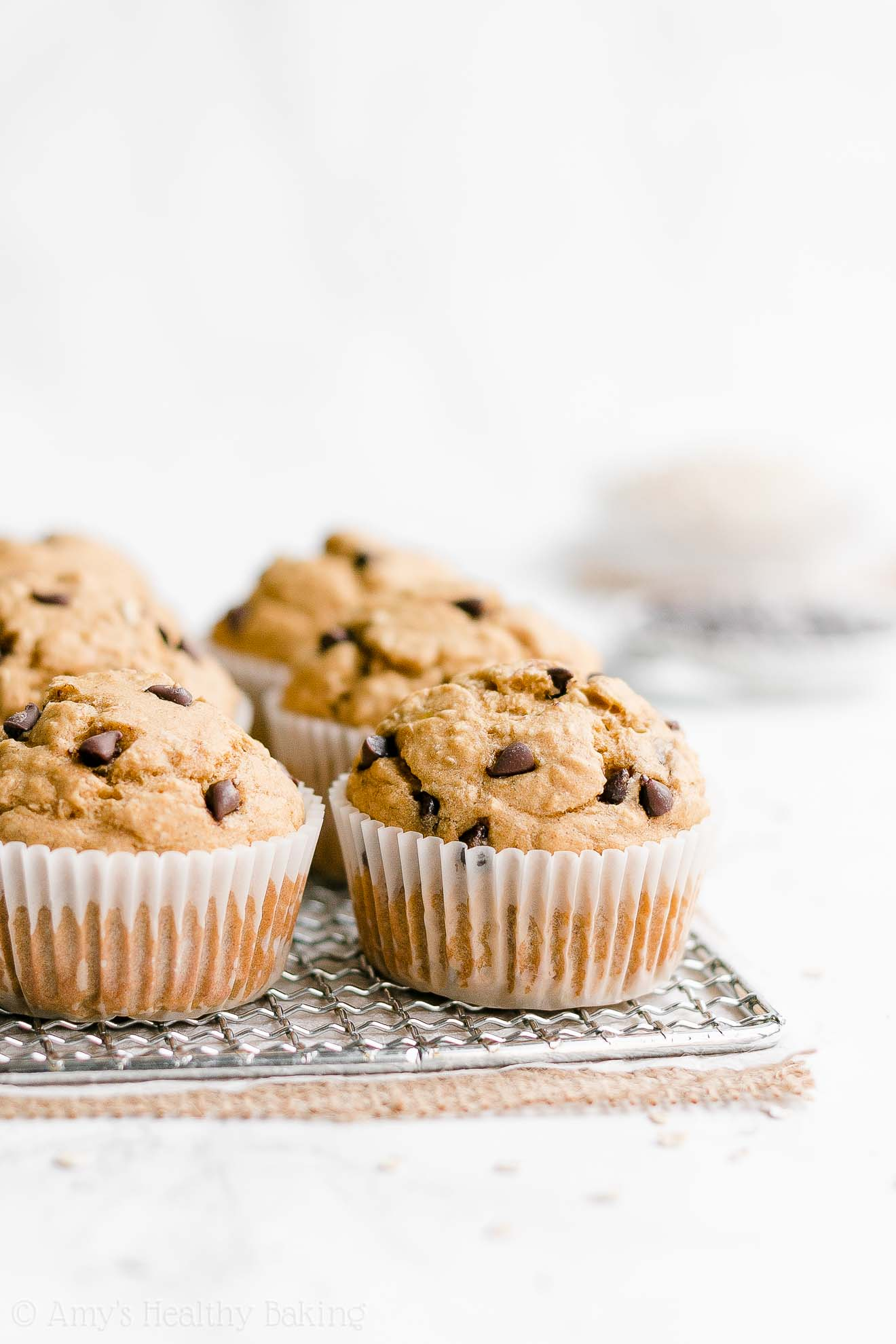Easy Healthy Gluten Free Sugar Free Banana Chocolate Chip Oatmeal Muffins