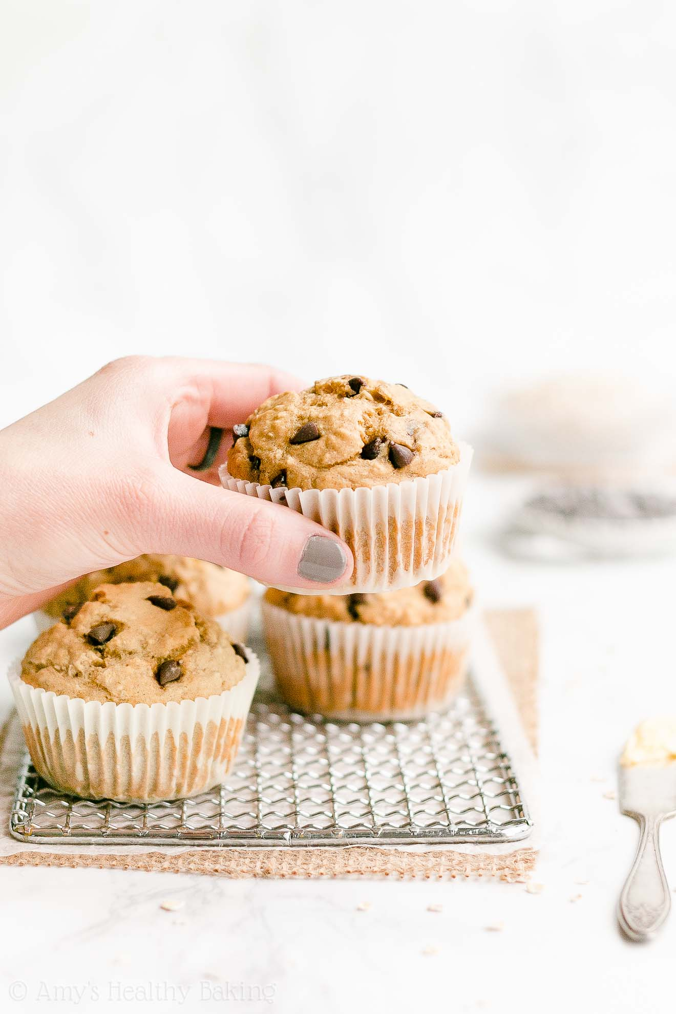 Best Easy Healthy Gluten Free Low Fat Banana Chocolate Chip Oatmeal Muffins
