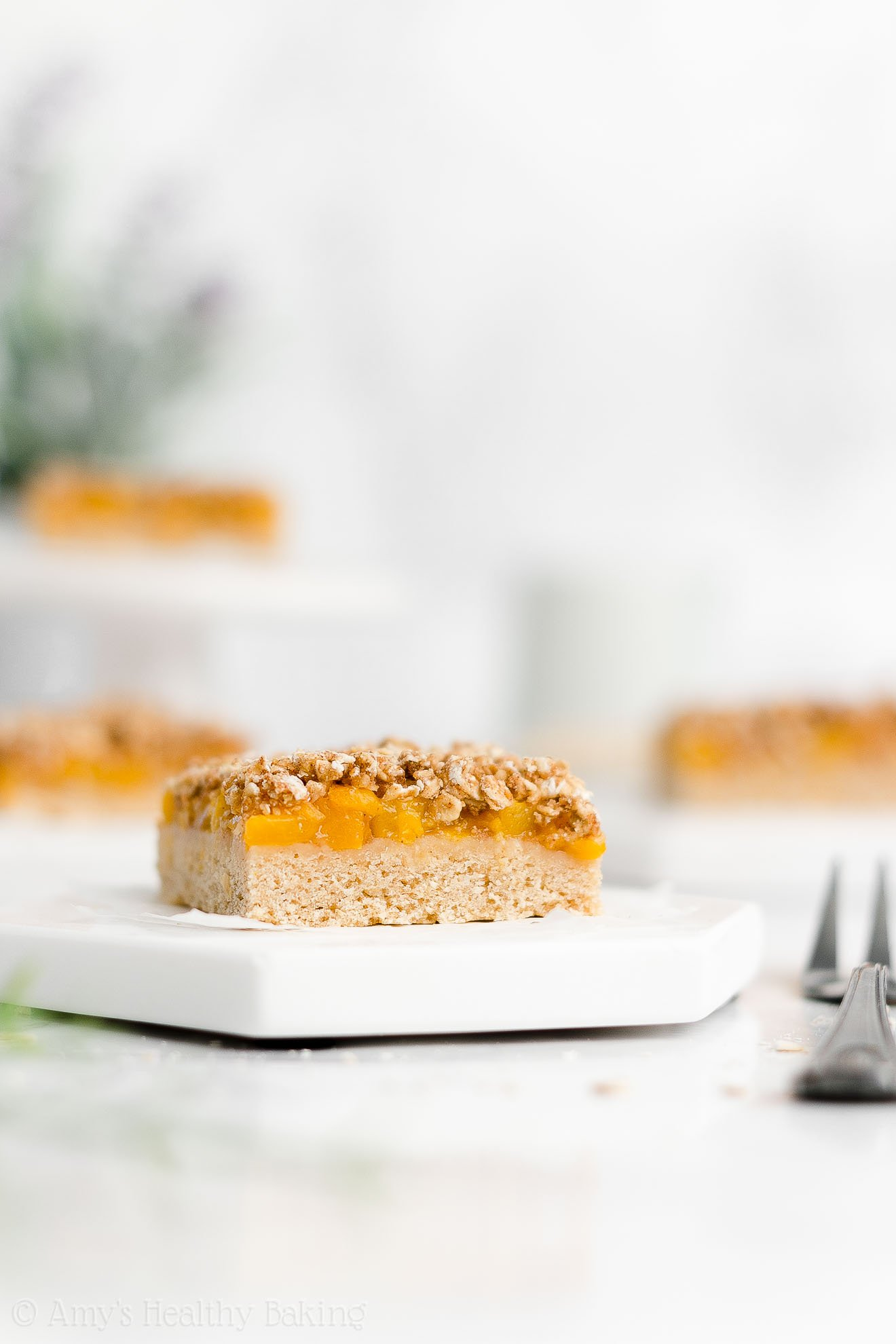Best Easy Healthy Gluten Free Vegan Fresh Peach Oatmeal Crumble Bars