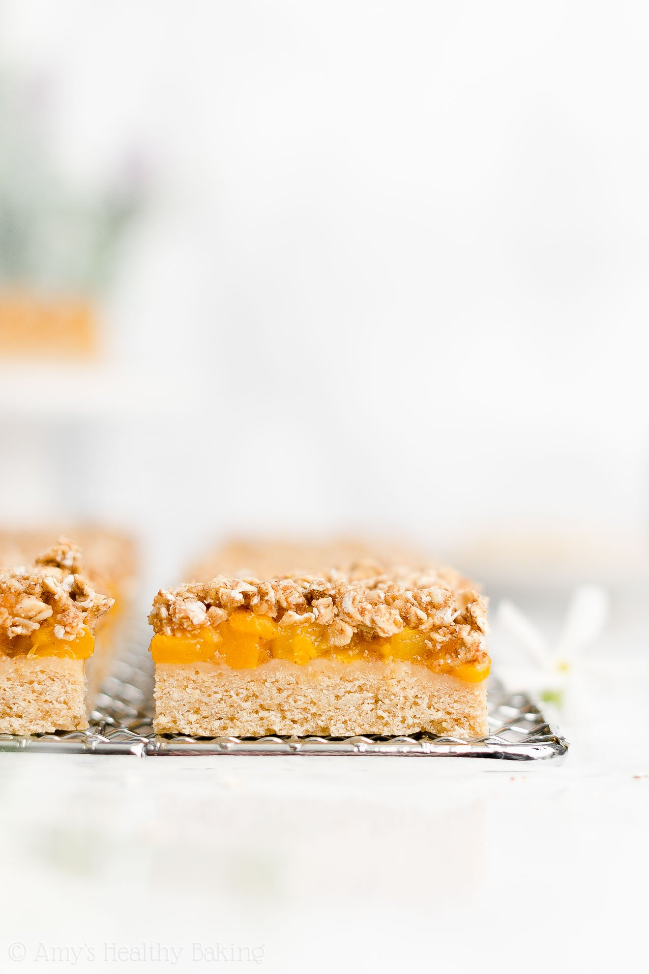 Beset Easy Healthy Clean Vegan No Egg Low Sugar Peach Oat Crumble Bars