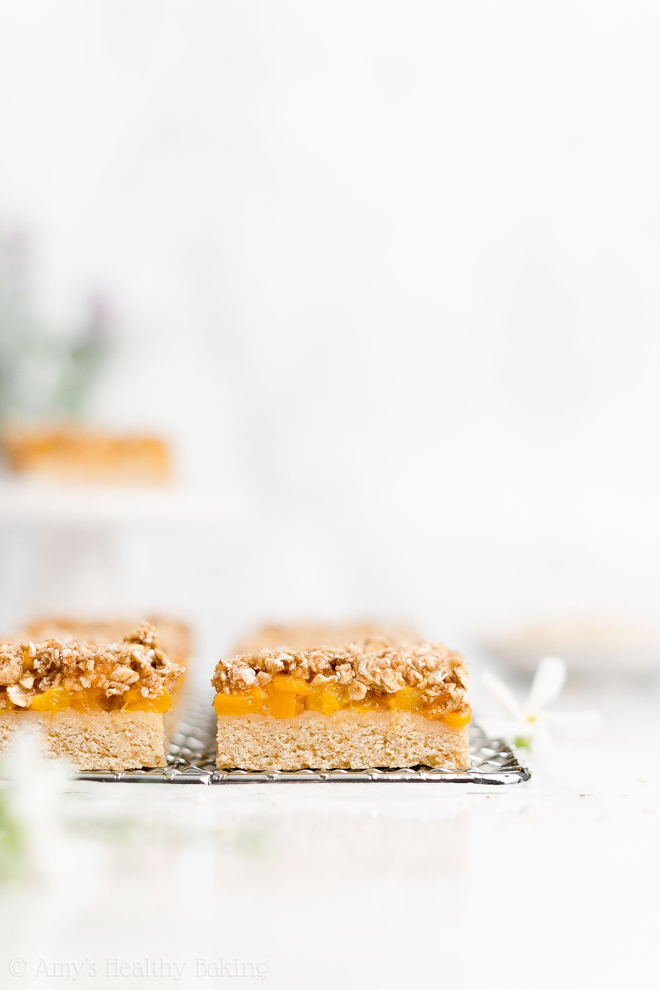 Easy Healthy Clean Eating Low Fat Vegan Dairy Free Fresh Peach Crumble Bars