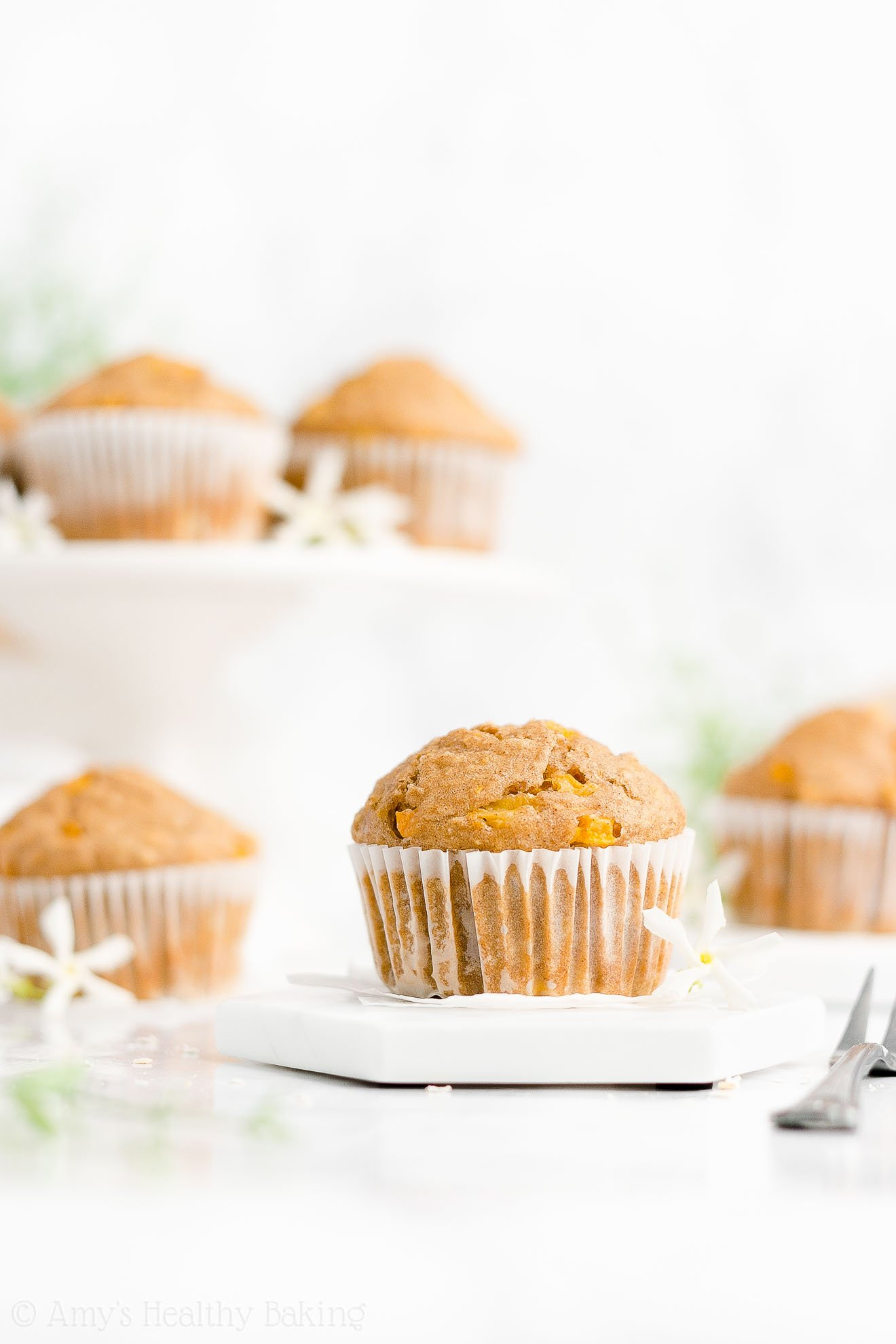 Easy Healthy Low Fat Low Sugar Gluten Free Moist Fresh Peach Oatmeal Muffins