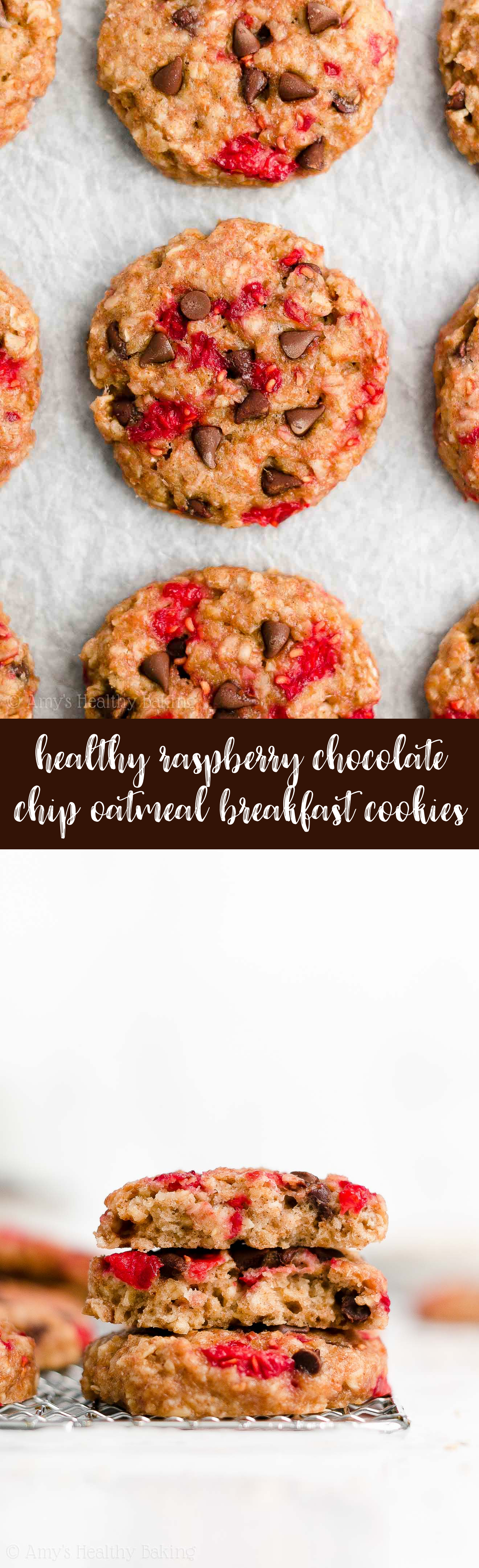 Best Easy Healthy Low Calorie Gluten Free Raspberry Chocolate Chip Oatmeal Breakfast Cookies