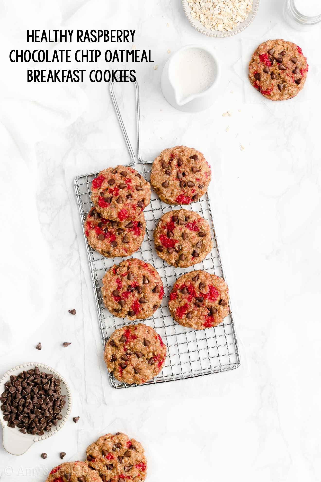 Best Easy Healthy Whole Wheat Chewy Raspberry Chocolate Chip Oatmeal Breakfast Cookies