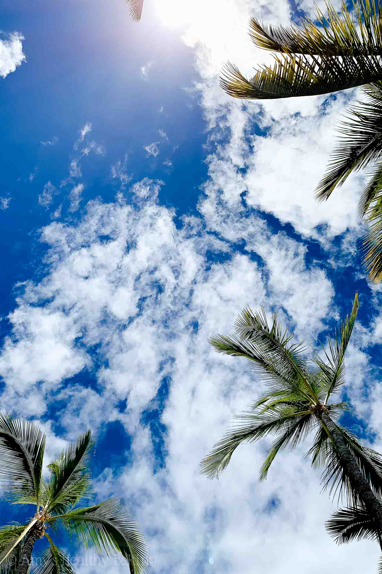 Palm trees, clouds and a bright blue sky in Waikoloa on the Big Island of Hawaii