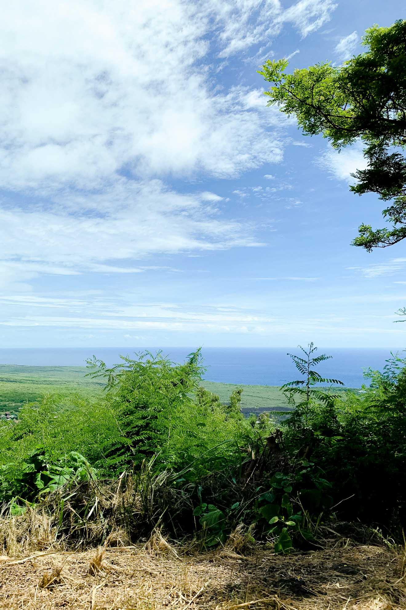 View driving south from Kona to the Place of Refuge on the Big Island of Hawaii